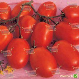 Ксико F1 семена томата дет. слив. 100-110 гр. (NongWoo Bio)