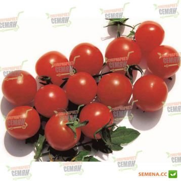 Мини Бол F1 семена томата индет. черри (NongWoo Bio)
