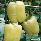 Сільвер Бел F1 насіння перцю солодкого (NongWoo Bio)