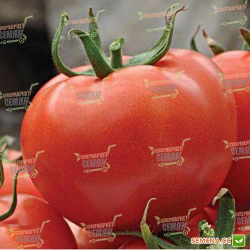 Магнетик F1 семена томата индет. среднего 115-125 дн. окр. до 200гр красный (Hazera)