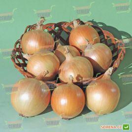 АМГ 1121 (АМG 1121 st. Yuri) семена лука репчатого среднего (AMG) СНЯТО С ПРОИЗВОДСТВА