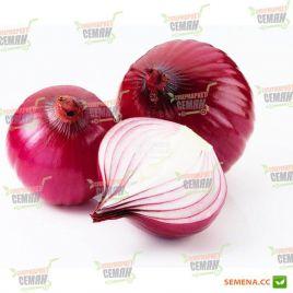 AMG 1215 F1 семена лука репчатого красного раннего (AMG) СНЯТО С ПРОИЗВОДСТВА