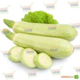 AMG 4060 F1 семена кабачка ультрараннего светло-зеленого (AMG) СНЯТО С ПРОИЗВОДСТВА