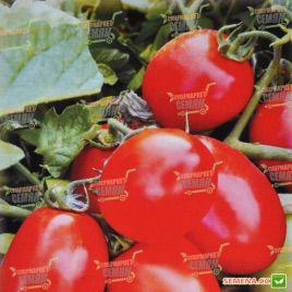 AMG 6090 F1 семена томата дет. (AMG)