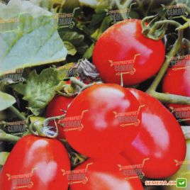 AMG 6090 F1 семена томата дет. 80-110 гр. (AMG) СНЯТО С ПРОИЗВОДСТВА