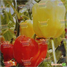 AMG 8065 F1 семена перца сладкого раннего 65-70 дн. красн. кубов. (AMG) СНЯТО С ПРОИЗВОДСТВА