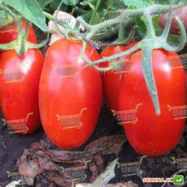 Кальверт F1 семена томата дет. среднего 75 дн. слив. 70 гр. (Esasem)