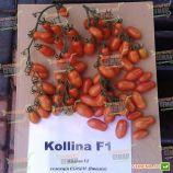СOLLINA F1 семена томата индет. черри (Esasem)