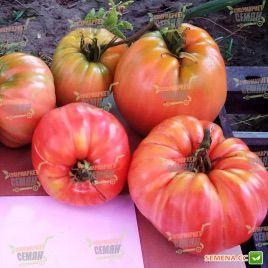 Сердце Прекрасной Горы F1 (Oxheart Belmonte F1) семена томата индет. розового (Esasem)