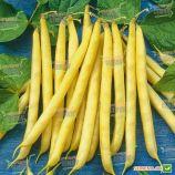Бергольд семена фасоли спаржевой кустовой средней 80-90 дн. желт. (Hortus)