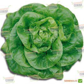 Мона семена салата тип Маслянистый (Euroseed КЛ)
