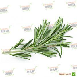 Розмарин семена (Hem Zaden ПН)