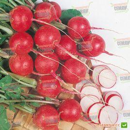 Черри Белле семена редиса 25 дн. (Hortus)