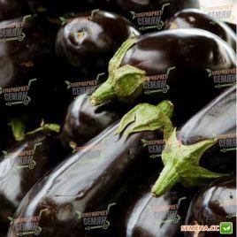 Беллеса Нера семена баклажана тип Клоринда среднего 120-130 дн. 550 гр. 12-15 см овальн.(SAIS)