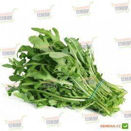 Колтивата семена рукколы (SAIS)