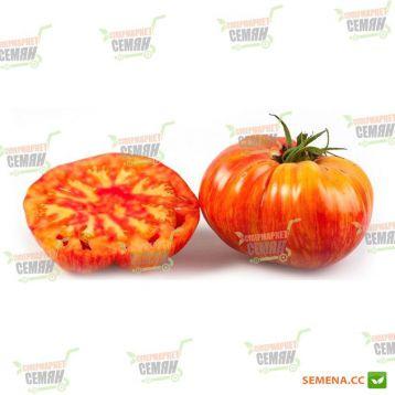 Мистер Страйпи (Mister Stripey) семена томата индет. раннего 105-115 дн. окр.-припл. 400-600 гр. оранж. (NE Seed) НЕТ ТОВАРА