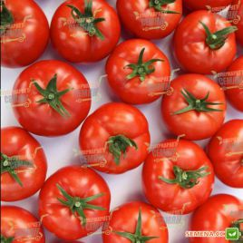 Анталия F1 семена томата индет. раннего окр.-прип. 170-190г (Yuksel)