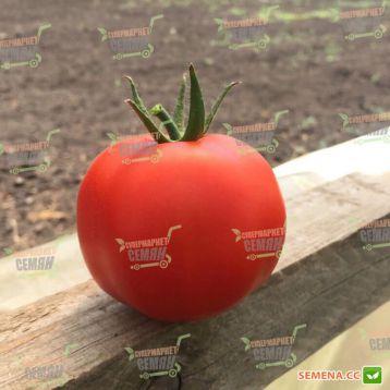 Анталия F1 семена томата индет. раннего 95-100 дн. окр.-прип. 170-190г (Yuksel)