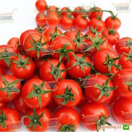 Арома F1 семена томата индет. кокт. раннего окр. 40-50 гр. (Yuksel)