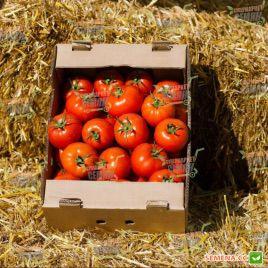 Азия F1 семена томата индет. среднераннего 60-65 дн. окр.-прип. 300-350г (Yuksel)