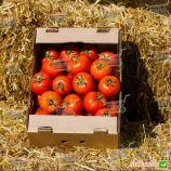 Азия F1 семена томата индет. среднераннего 100-110 дн. окр.-прип. 300-350г (Yuksel)
