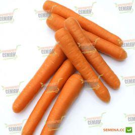 Болеро F1 семена моркови Нантес поздней 115-120 дн. (Vilmorin)