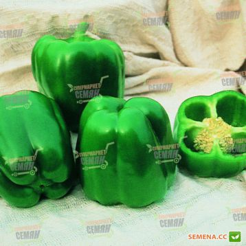 Фигаро F1 семена перца сладкого (Vilmorin)