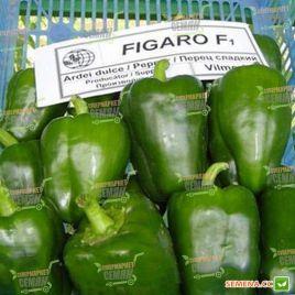 Фигаро F1 семена перца сладкого (Vilmorin) СНЯТО С ПРОИЗВОДСТВА