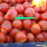 Ольга F1 семена томата дет. раннего 95-100 дн. окр. 160-180 гр. красный (Vilmorin)