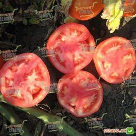 Трибека F1 семена томата дет. средний 75-80 дн. окр. 220-230 гр. (Vilmorin)