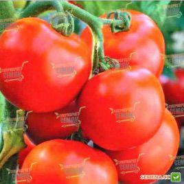 Тайпринц F1 семена томата дет. (United Genetics)