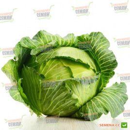 Брауншвайгер семена капусты б/к средней (Satimex)