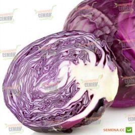 Гако семена капусты к/к средней (Satimex)