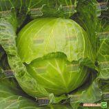 Июньская семена капусты б/к ранней 60-65 дн. 1-2,5 кг окр. (Satimex СДБ)