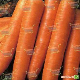 Осенняя Королева семена моркови Флакке поздней 140-160 дн (Satimex КЛ)