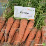 Престо F1 (калибр. 16-18 мм) семена моркови Нантес ранней 70-75 дн. (Vilmorin)