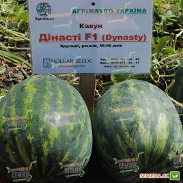 Династи (HSR 4657) семена арбуза тип Кримсон Свит раннего 56-58 дней 10-12 кг (Hollar Seeds) НЕТ ТОВАРА