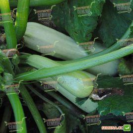 Каризма F1 семена кабачка раннего 43-44дн. светло-зеленого (Syngenta)