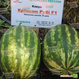 Кримсон Руби F1 семена арбуза тип Кримсон Свит 65-70 дней 10-12 кг (Sakata)