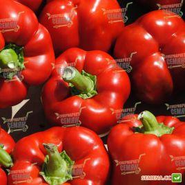 Ред Джет F1 семена перца сладкого тип Блочный среднего 75-80 дн. корот.куб. 250г. 9х7см 4-х камер. 8-9мм зел./красн. (Rijk Zwaan