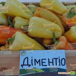 Диментио F1 семена перца сладкого 58-63 дн 110-140 гр сл. кость/красн. конич. (Syngenta)