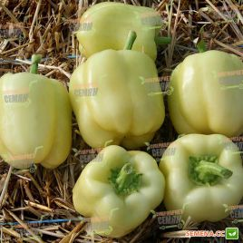 Оида F1 семена перца сладкого раннего 65-70 дн. (Clause)