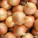Люси семена лука репчатого (Semo)