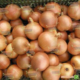 Люси семена лука репчатого раннего 130г (Semo)