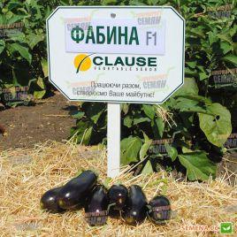 Фабина F1 семена баклажана тип Алмаз раннего 95-105 дн. 250-300 гр. 20-23 см удл.-цил. (Clause)