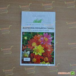 Миньон смесь семена георгины (Hem Zaden)
