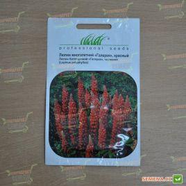 Галерея красная семена люпина многолетнего (Hem Zaden)