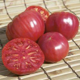 Торбей F1 семена томата дет. розового (Bejo)