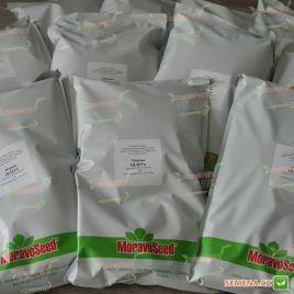 Цидера семена моркови Нантес поздней 145-155 дн. (Moravoseed)