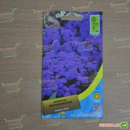Агератум Мексиканский фиолетового семена однол. (Moravoseed) НЕТ ТОВАРА